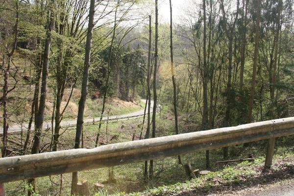 Blasen im schwarzwald - 3 3